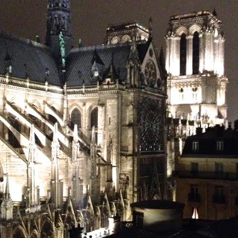 Studio with view on Notre Dame