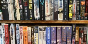 The Encyclopedia of Thriller writers